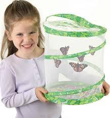 Live Butterfly Garden Details Rainbow Resource Center Inc