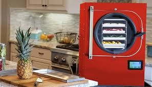 Buy a Home Freeze Dryer or Buy Your Foods Freeze Dried