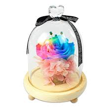 2019 2018 Wholesale Preserved Natural Forever Roses Flowers In Glass Five  Colors Best Happy Birthday Gift Ideas For Girlfriend From ... Rose Whosale Coupons Promo Codes August 2019 Cairo Flower Shops And Florists Whosale Rate Up To 80 Offstand Collar Zip Metallic Bomber Jacket Sand Under My Feet Rosewhosalecom Product Reviews Alc Robbie Pant Womenscoupon Codescheap Sale Angel Zheng Author At Spkoftheangel Page 30 Of 50 Rosewhosale Hashtag On Twitter Pioneer Imports Flowers Bulk Online Blooms By The Box Vintage Guns N Roses Tour 92 Concert T Shirt Usa Size S 3xlfashion 100 Cotton Tee Short Sleeve Tops Pug Funky Shirts Promotion Code Babies R Us Ami