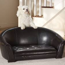 Wayfair Dog Beds by 33 Best Toy Poodles Pet Sofa Beds And More Images On Pinterest