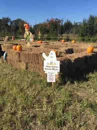 Lehner Pumpkin Farm by Lehner Farm And Nurseries Home Facebook