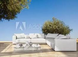 127 196 olivenbaum fototapeten leinwandbilder und aufkleber