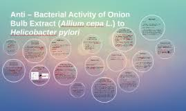 anti bacterial activity of bulb extract allium cepa by