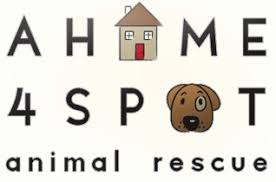 A Home 4 Spot Animal Rescue