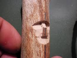 wood spirit carving tutorial very pic heavy darvodelstvo