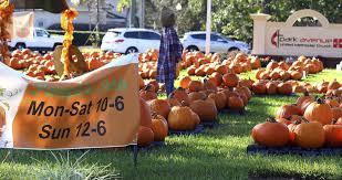 Pumpkin Patch Church Tallahassee by Pumpkins At Park Local News Valdostadailytimes Com