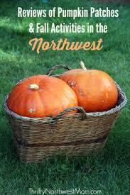 Pumpkin Patches Cincinnati Ohio Area by Double R Farms Pumpkin Patch U2013 Puyallup Wa Puyallup Wa Farming