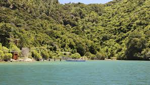 100 Waterfall Bay Queen Charlotte Sound Cruise Guide