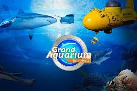 grand aquarium de malo grand aquarium malo hotel chateaubriand à malo