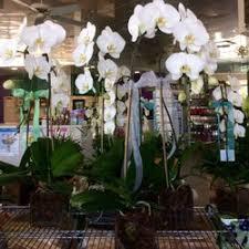 Christmas Tree Recycling Carmel Valley San Diego by Conroy U0027s Flowers 17 Photos U0026 29 Reviews Florists 4310