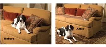 PetSafe Pawz Away Mat Keep Pets f Furniture FREE SHIPPING