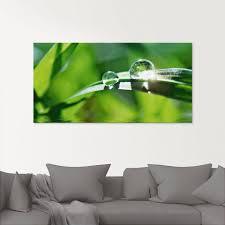 artland glasbild grüner hintergrund mit gras gräser 1 stück kaufen otto