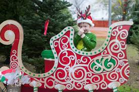 Christmas Tree Baler Netting by Christmas Tree Baler Christmas Lights Decoration