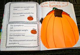 Stages Of Pumpkin Plants by Teaching Science With Lynda 2014 07 13