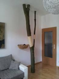 katzenkratzbaum ein echter baum die stellen die mit