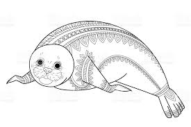 Cute Seal Zen Vector Phoca Tangle Wild Animals Coloring Book For Adult