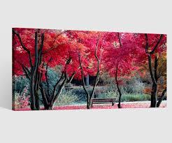leinwandbild 1tlg bäume landschaft herbst rote blätter leinwand bilder wandbild leinwandbilder wohnzimmer gerahmt 9cb568