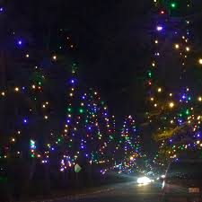 Christmas Tree Lane Fresno by Offbeat L A Four Local Christmas Picks To Help You Find That