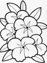 Download Coloring Pages Flower Color Beautiful Flowers Pinterest Free