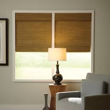 Light Filtering Privacy Curtains by Window Coverings For Privacy Buying Guide