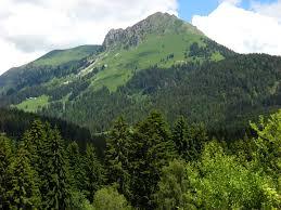 chambre d hote en suisse die region au petit gîte chambres d hôtes les paccots suisse