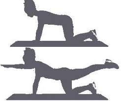 Exercise Floor by What Are The Best Pelvic Floor Exercises Do You Need Them
