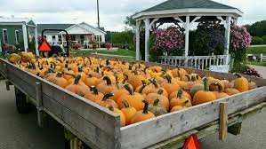 Pumpkin Farms Wisconsin by Don U0027t Miss These 10 Great Pumpkin Patches In Wisconsin
