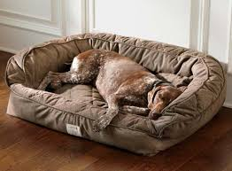 orvis deep dish dog bed with memory foam large dogs up to 60 120