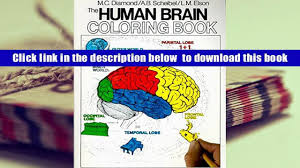 Audiobook The Human Brain Coloring Book Concepts Series