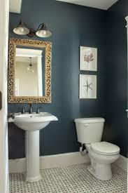 Half Bath Theme Ideas by 133 Best Paint Colors For Bathrooms Images On Pinterest Bathroom