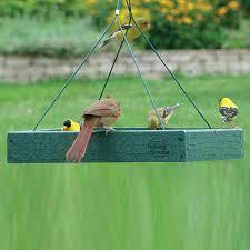 Shop WoodLink Going Green Plastic Platform Bird Feeder at Lowes
