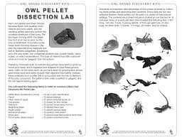 Owl Pellet Dissection Lab - Owl Brand Discovery Kits Attracting Barn Owls Natural Rodent Control Gardening Energy Transfer And The Carbon Cycle Worksheet Edplace Tritec Science Learning Community Projects Organisms Roles Loss In Food Chain Ecology Biology Lecture Slides Outreach Materials Owl Original Mixed Media Pating 6x8 Inches Bird Wild Decomposers Worksheets For Kids Archbold Biological Station 14 Images Of Wetland Coloring Pages Diagram 037_13d0568f9211773be9a9d4d89c530b2png