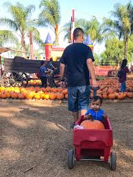 Kidspace Childrens Museum Annual Pumpkin Festival by Life By Meli