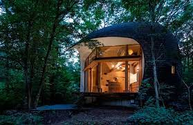 104 Japanese Tiny House Shell In Forest By Toni Mirari