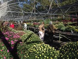 Fall Plant Sale Mobile Botanical Gardens
