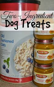 Turkey And Pumpkin For Dog Diarrhea by 211 Best Pets Images On Pinterest Dog Care Dog Stuff And Dog Mom