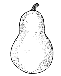 Pear black and white clipart