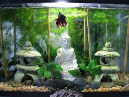 Spongebob Fish Tank Decor Set by Best 25 Betta Fish Tank Ideas On Pinterest Betta Tank Betta