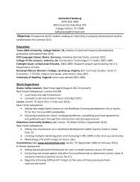 Resume Example Template For College Student Internships Objective Internship Web Designer