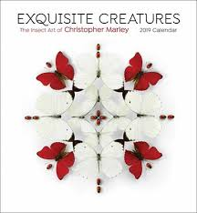Exquisite Creatures By Christopher Marley Calendar 2019
