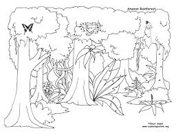 Printable Pictures Rainforest Coloring Pages 16 For Your Free
