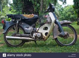 Old Motor Scooter Or Moped On A Palm Tree Plantation Near Lake Chini Malaysia