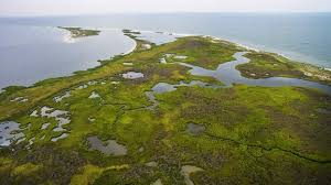 warner kaine urge trump to save tangier island from sinking into