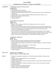 Download Veterinary Assistant Resume Sample As Image File