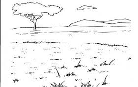 Grassland Animal Habitat Coloring Pages