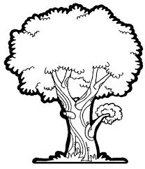 Nice Pics Pencil Drawing Mango Tree Roots Clipart Mango