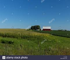 Corn Barn Vintage Stock Photos & Corn Barn Vintage Stock Images ... Red Barn In Arkansas Red Hot Passion Pinterest Barns New Mexico Medical Cannabis Sales Up 56 Percent Patients 74 Barnhouse Country Stock Photo 50800921 Shutterstock Rowleys Barn Home Of Spoon Interactive Childrens Dicated On Opening Day Latest Img_20170302_162810 Growers Redbarn Wet Cat Food Two Go Tiki Touring Black Market The Original Choppers By Redbarn 100 Natural Baked Beef Chews For Dogs Meet The Team Checking Out Santaquin Utah Bully Stick