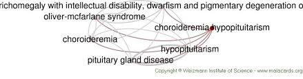 Diseases Related To Choroideremia Hypopituitarism