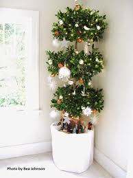 Potted Christmas Tree by Zero Waste Mommy Zero Waste Your Christmas Decorations