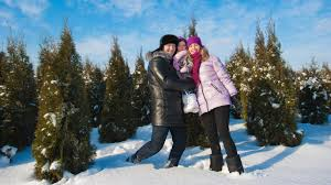 Canaan Fir Good Christmas Tree by The Best Christmas Tree Farms In Nj Best Of Nj Nj Lifestyle
